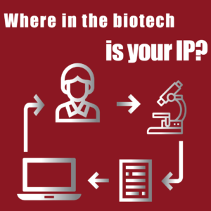 Where is your IP in your company?
